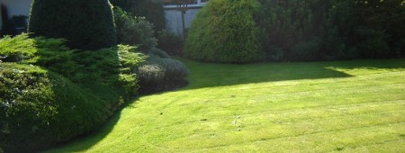entretien-jardins3